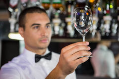 Barkeeper checking a wine glass. After cleaning stock photos