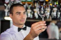 Barkeeper die een wijnglas controleren stock foto's