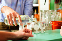 Barkeeper putting hard liquor glasses on bar Stock Photo