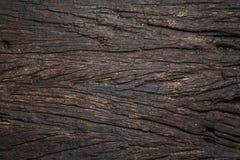 Barkenbaumbeschaffenheit Stockfotografie