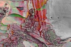Barkentyna stary drzewo magiczny irrealny czerwony szary tekstury background/ zdjęcie royalty free