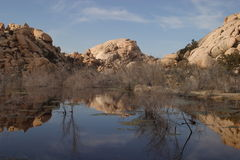 Barker Dam. And reflection in Joshua Tree National Park royalty free stock photography