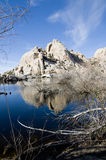 Barker Dam, Joshua Tree National Park. On the 1.1.11, after many days of rainfall stock image