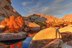 Barker Dam - Joshua Tree National Park. Barker Dam in Joshua Tree National Park in the evening at sunset royalty free stock photos