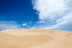 Barkhan in a desert Royalty Free Stock Photography