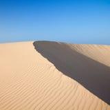 Barkhan dune, evening light Royalty Free Stock Image