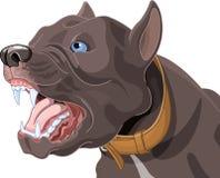 Barking Dog. Illustration of a barking dog Stock Image