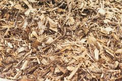 Barking Wood Chip Mulch. Full Background View royalty free stock photography