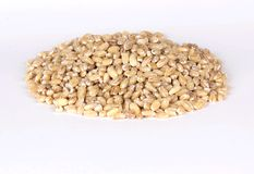Barley Stock Images