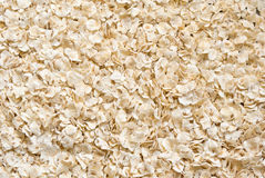 Barley background Royalty Free Stock Images