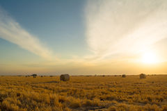 Barley bales at sunset. Barley hay bales sunset storm crop farm rural queensland jimbour Australia colour bright agriculture Royalty Free Stock Photo