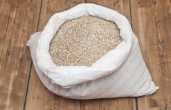Barley beans. Grains of malt close-up Royalty Free Stock Photo