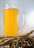 Barley and beer Stock Photos