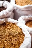 Barley in big bags the brewery stock images