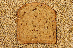 Barley and bread Stock Photography