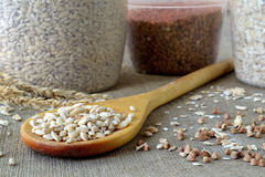 Barley, buckwheat and oat groats. Three jars of grains and cereals with a wooden spoon Royalty Free Stock Photography