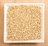 Barley in ceramic plate Stock Photo