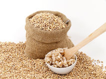 Barley corns raw and cooked Stock Images