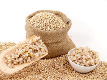 Barley corns raw and cooked Royalty Free Stock Photos