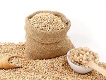 Barley corns raw and cooked Royalty Free Stock Photo