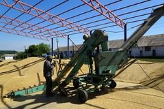 Barley crops being separated out of dust in the yard. Barley crops being separated out of dust in the yard with help of a winnowing machine royalty free stock photography