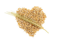 Barley Cupid heart Royalty Free Stock Photography