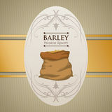 Barley design Royalty Free Stock Photo