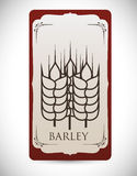 Barley design Royalty Free Stock Images
