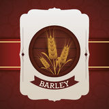 Barley design Stock Photography