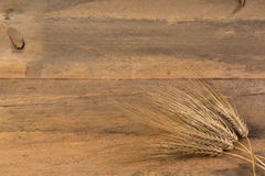 Barley ears on wooden table Stock Photography