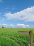 Barley field behind milepost marked ?footpath? Royalty Free Stock Photography