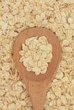 Barley Flakes Royalty Free Stock Image