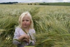 Barley Girl Stock Photo