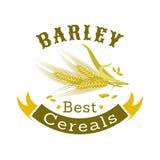Barley grain badge for food packaging design Stock Photos