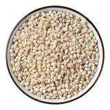 Barley grain Stock Photos