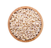 Barley grain seed. On wooden bowl background royalty free stock photos