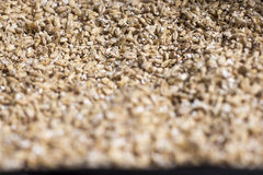 Barley grain. The view from the top. Product for beer production.  Royalty Free Stock Photography