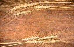 Barley grain on wooden table Stock Photos