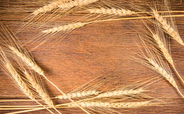 Barley grain on wooden table Royalty Free Stock Photography
