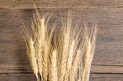 Barley grain on wooden table Stock Images