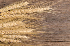 Barley grain on wooden table Stock Photography