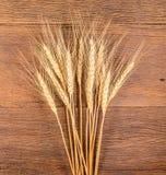 Barley grain on wooden table Royalty Free Stock Photos