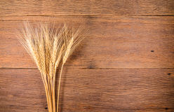 Barley grain on wooden table Royalty Free Stock Image