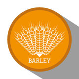 Barley grains design. Barley concept with grains design, vector illustration 10 eps graphic Stock Photo