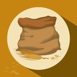 Barley grains design Stock Photos