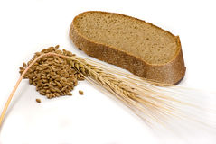 Barley grains, ear and piece of bread. Over the white background Stock Images
