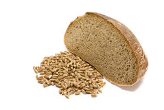 Barley grains and the piece of bread. Barley grains and piece of bread over the white background Royalty Free Stock Photo