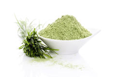Barley grass. Superfood. Wheatgrass blades and barley grass ground powder on white background with reflection. Natural organic healthy living. Superfood Royalty Free Stock Photo