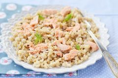 Barley groats in a plate Stock Photos