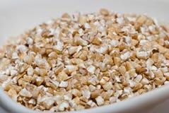 Barley groats Stock Image